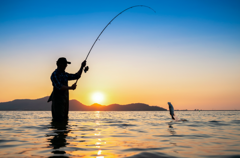 Angler catching a fish at sunset